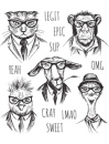 cms288-ranger-tim-holtz-hipster-rubber-stamp-stampers-anonymous